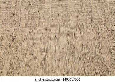 Straw wall texture background outdoor