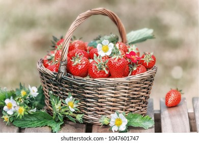 Strawberries in a basket on a wooden table