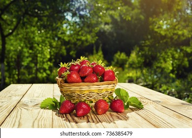 strawberries in basket on wooden table in natural background,Delicious first class organic fruit as a concept of summer vitamins