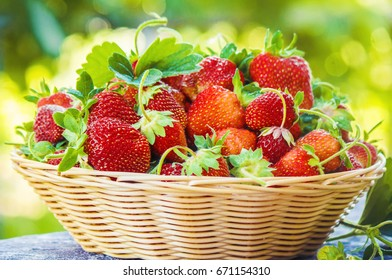 Strawberries in the basket. Selective focus.