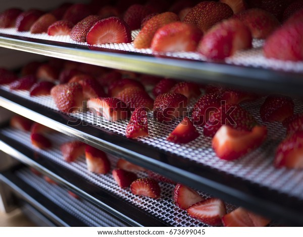 Strawberries being dehydrated on racks in a machine