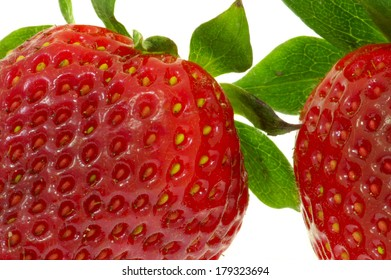 Strawberries close-up, isolated on white