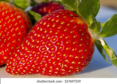 strawberries in datail