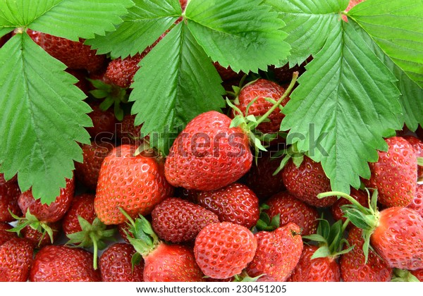 strawberries with leaf and flower head