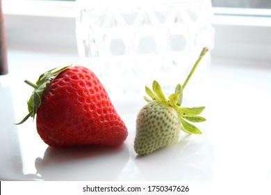 Strawberries on white gloss kitchen tiles