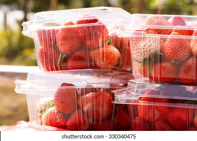 Strawberries packaging for sell.