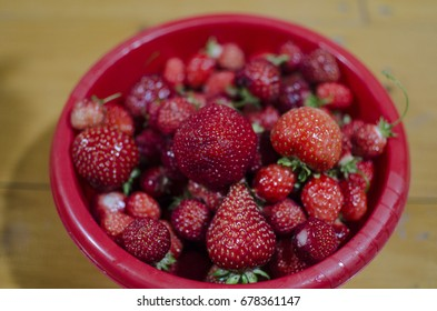 A lot of strawberries in a red bowl