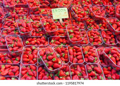 Strawberries for sale in plastic trays in a market in Stockholm, Sweden, Europe