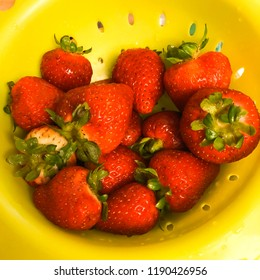 Strawberries washed and ready for dehydration