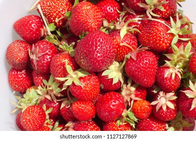 strawberry background red fruits agrigulture fresh organic juicy food