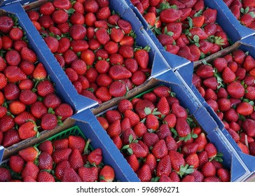 Strawberry display at a roadside farm stand in Florida.