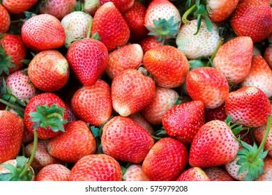 Strawberry fruit in market