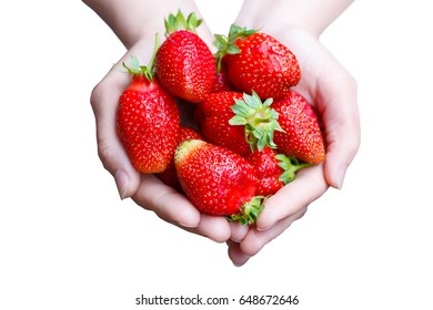 Strawberry in the hands isolated on a white background.