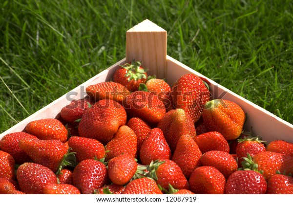 strawberry on the grass