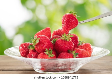 Strawberry of red maturity