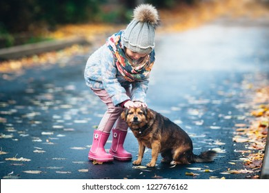 Stray dog playing with a girl