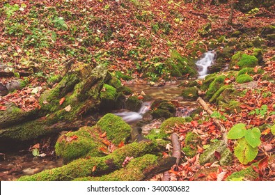 Stream in the autumn forest, Narodny park Slovensky Raj (National park Slovak paradise), Slovakia - Shutterstock ID 340030682