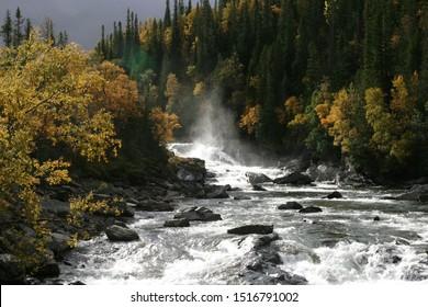 Stream in an autumn landscape