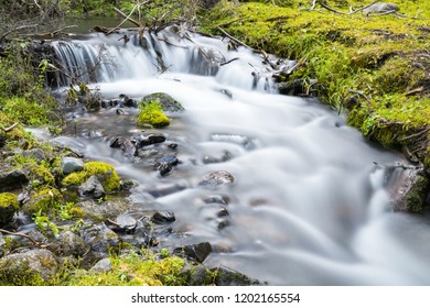 stream closeup in valley, slow shutter shooting