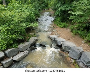 stream or creek in the forest or woods with rocks