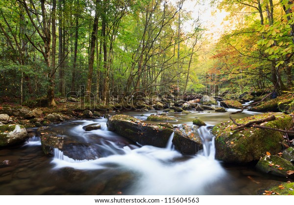 Stream in fall colors, the great smokey mountains national park. Tremont area