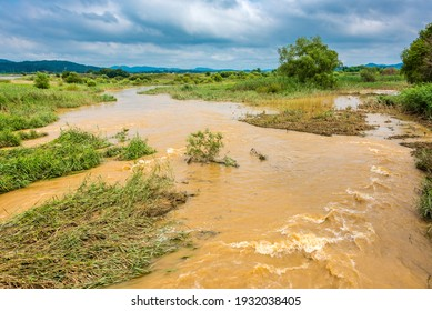 A stream flowing muddy water after rain, Sejong, South Korea