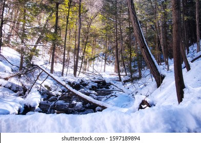 A stream flowing through deans ravine on the mohawk trail in Falls Village Connecticut on a sunny winter day.