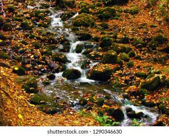 Stream flowing through rocks in Yedigoller region, Bolu, Turkey