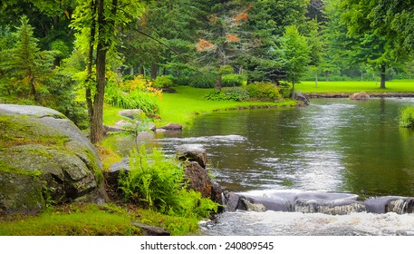 Stream flows through the park on a spring day.