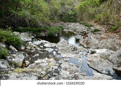 stream in forest, photo as a background taken in Nicoya, Costa rica central america , montezuma beach