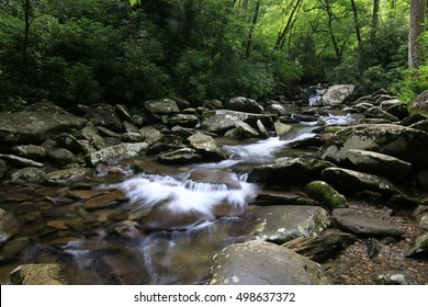 stream in the great smoky mountains