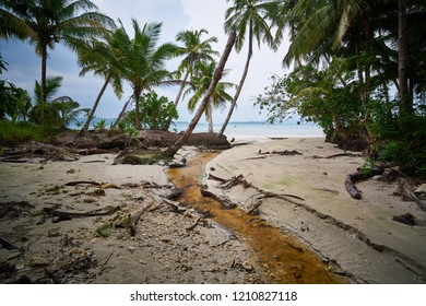 Stream from jungle on the tropical beach