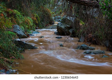 Stream at Kaledonia Waterfall after a thunderstorm
