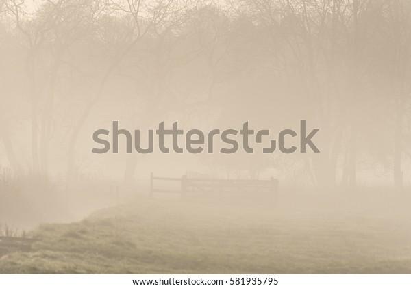 Stream and misty scene Wiltshire England