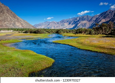Stream in Nubra valley. Hunber, Nubra valley, Ladakh, India