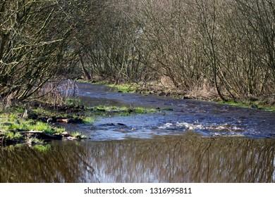 Stream the Old Deep in Stuidzand, the Netherlands