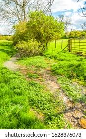 Stream running through a field Chipping Norton, Oxfordshire. England