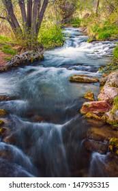stream running through forest area.