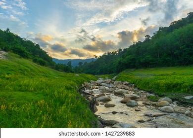 A stream running through a green meadow