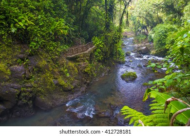 Stream at a tropical rainforest in Costa Rica at La Paz Waterfall Gardens