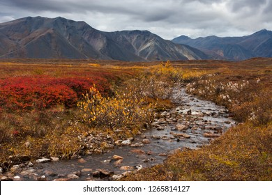 Stream in the tundra in the valley among the mountains of the Iskaten ridge. Beautiful autumn landscape. September in the far north near the Arctic Circle. Egvekinot, Chukotka, Far East of Russia.