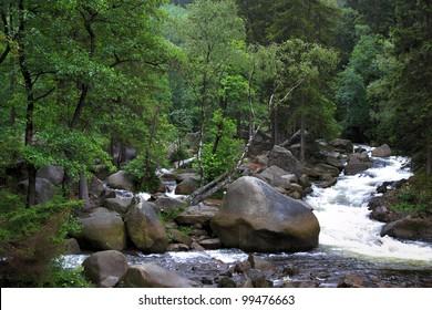 streambed of river oker in german harz region