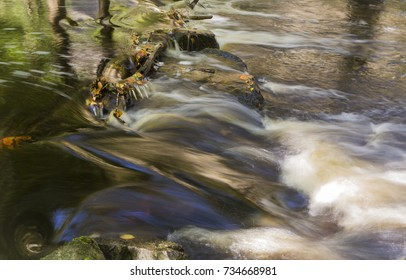 Streaming water in a brook in the canyon of the National park of Soderasen, Skane Sweden when fall