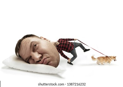 Street is calling, let's run. Big head on small body lying on the pillow. Man with little corgi cannot wake up 'cause headache and overslept. Concept of employment, hurrying up, time limits, vertigo.