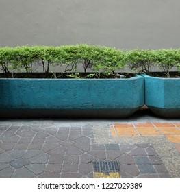 Street corner landscape Plant wall