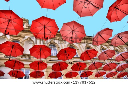 street decoration with colorful red umbrellas against blue sky between buildings on the street in old part of Belgrade, Serbia
