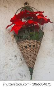 Street flower vase on the white wall