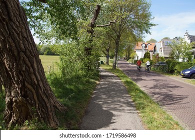Street and footpath with trees along a meadow and the Dutch village of Bergen. People cycle there. Spring, Netherlands, April 30, 2020.