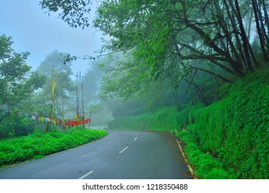 A street in gangtok passing through a forest covered in mist or fog.