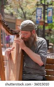 Street harpist